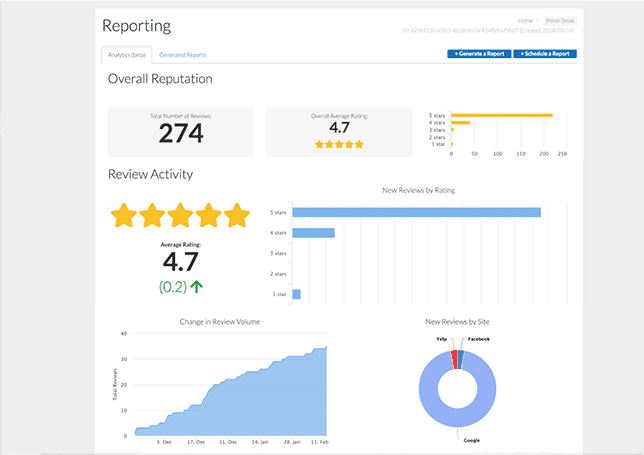 Custom review and testimonial reports